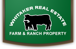 Whitaker Real Estate