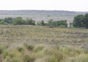 Hall County,Texas,Land,1016