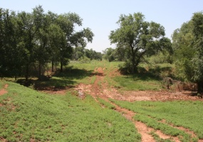 Hall County,Texas,Land,1019