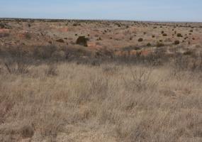 Briscoe County,Texas,Land,1020