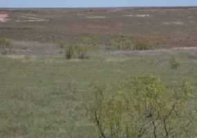 Gray County,Texas,Land,1021
