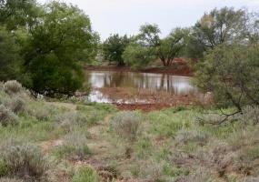 Texas,Land,1029