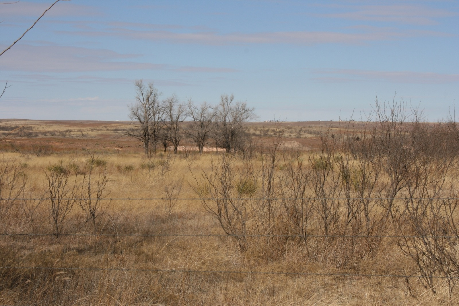 Donley County, Texas, ,Land,For sale,1010