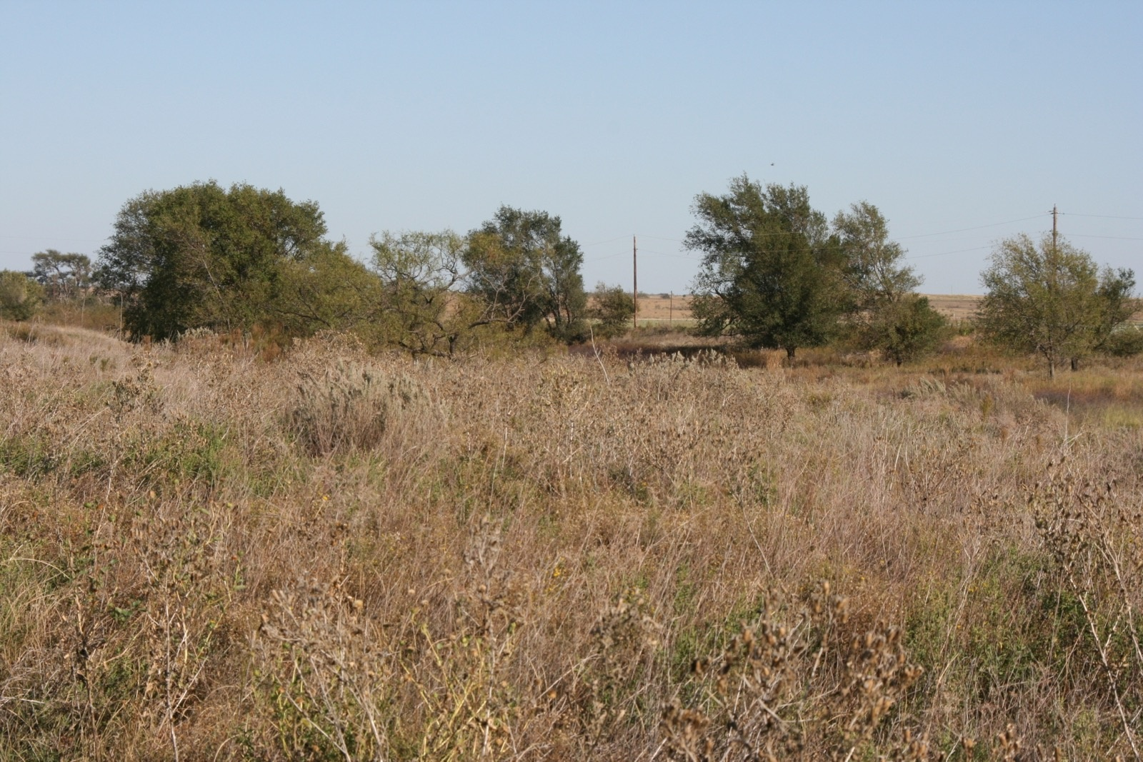 Donley County, Texas, ,Land,For sale,1018