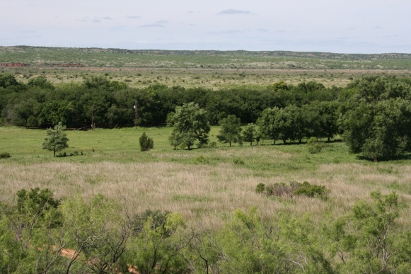 Hall County, Texas, ,Land,For sale,1030