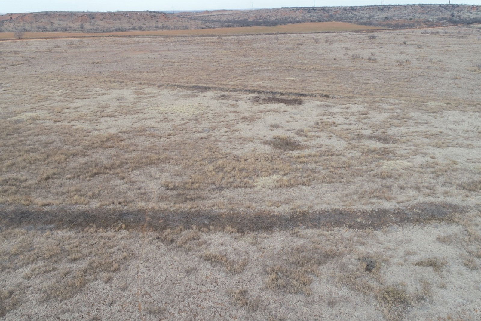 Hall County, Texas, ,Land,For sale,1031