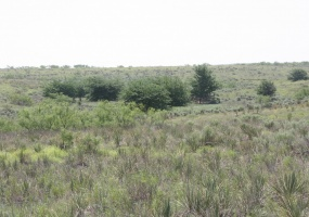Collingsworth County,Texas,Land,1035