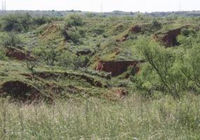 Hall County,Texas,Land,1036