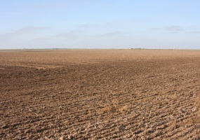 Randall County, Texas, ,Land,For sale,1037