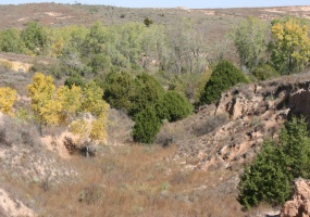 Donley County, Texas 79057, ,Land,For sale,1038