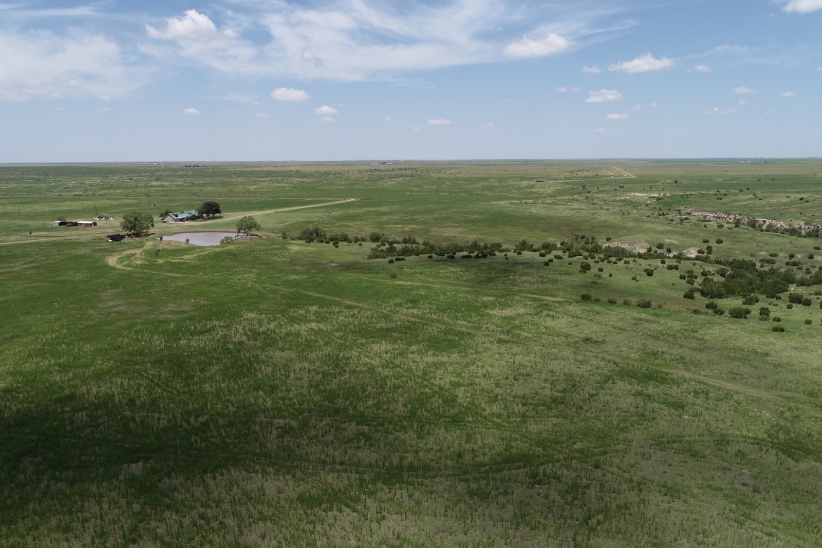 Armstrong County, Texas, ,Land,For sale,1039
