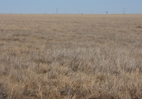 Armstrong County, Texas, ,Land,For sale,1041