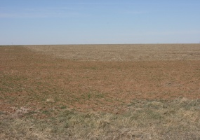 Carson County, Texas, ,Land,For sale,1042