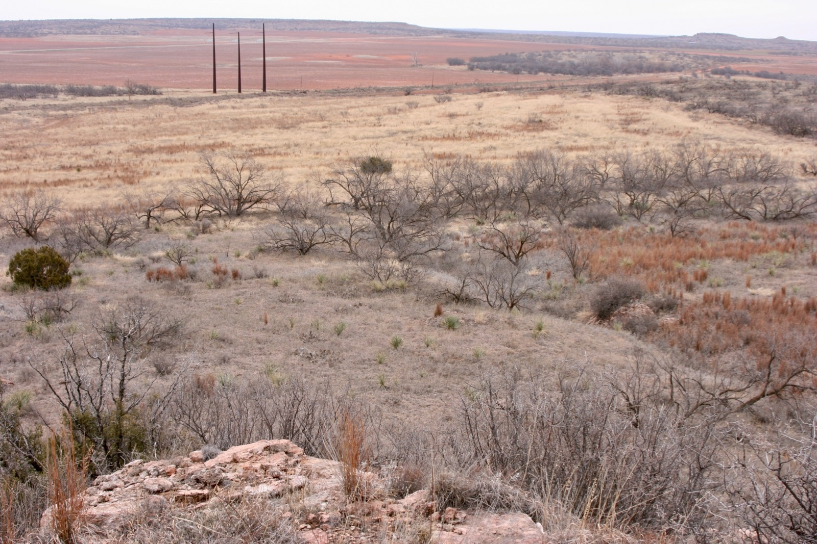 Hall Co., Texas, ,Land,For sale,1044