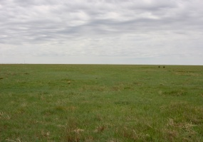 Moore County, Texas, ,Land,For sale,1048