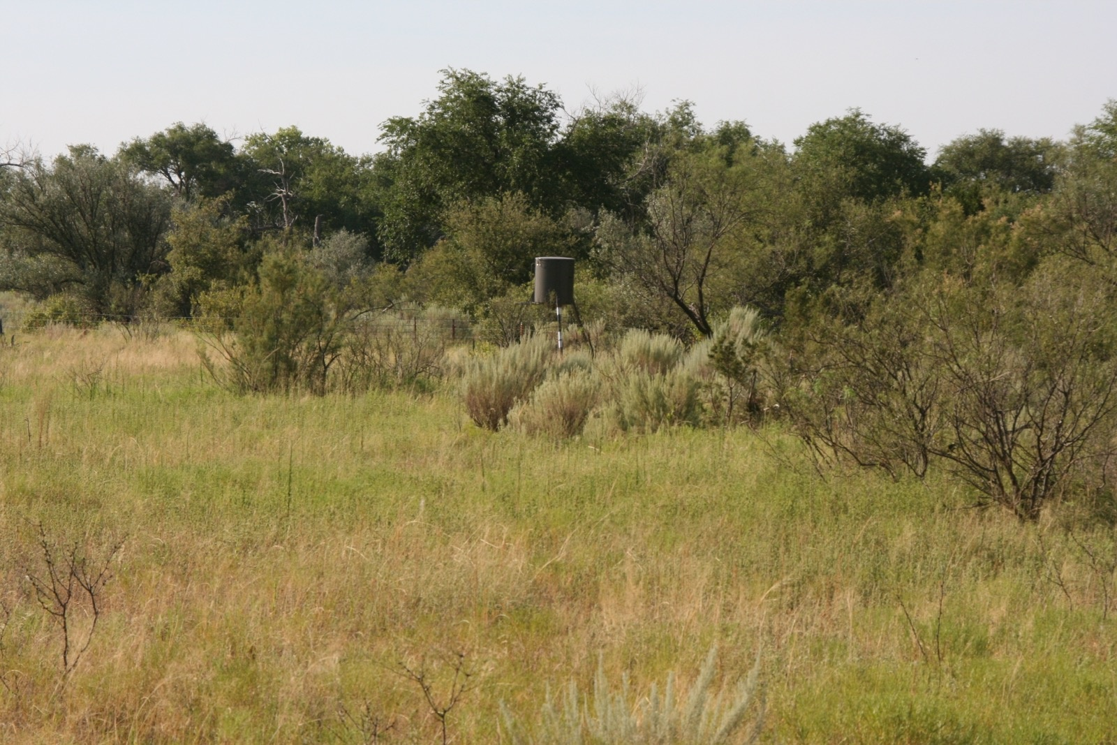 Hall County, Texas, ,Land,For sale,1050
