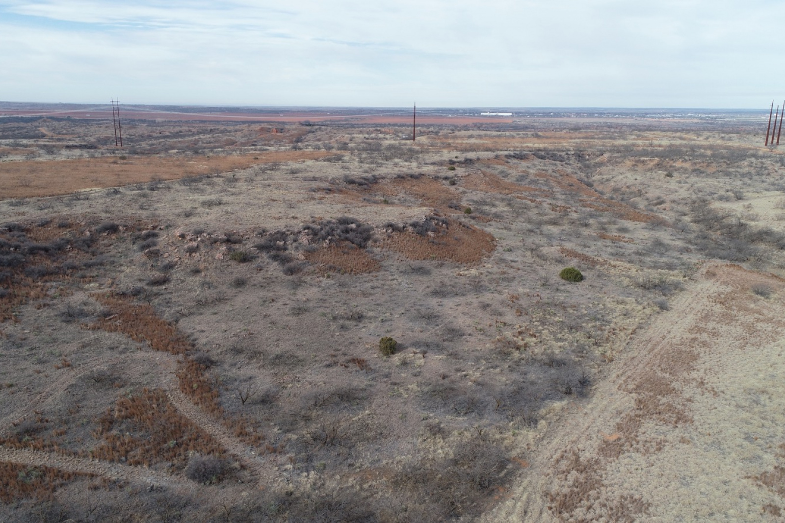 Hall County, Texas, ,Land,For sale,1054