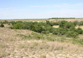 Donley County, Texas, ,Land,For sale,1071