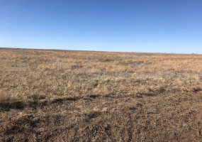 Swisher County, Texas, ,Land,For sale,1072