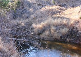 Armstrong County, Texas, ,Land,For sale,1075