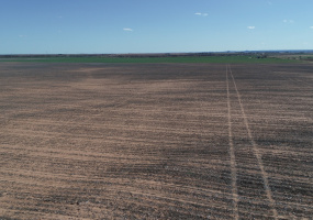 Briscoe County, Texas, ,Land,For sale,1077