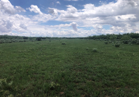 Donley County, Texas, ,Land,For sale,1078