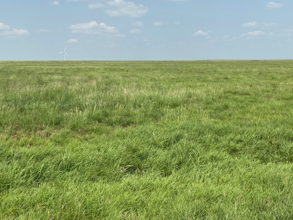 Deaf Smith County, Texas, ,Land,For sale,1079